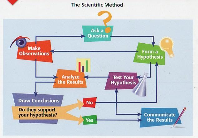 Bio216 Assignment evolution and data interpretation